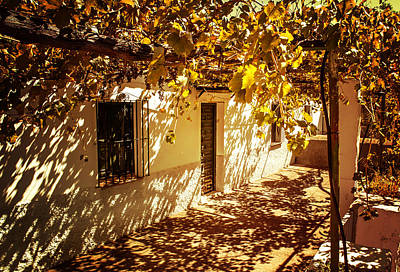 Grapevine Photograph - Vine-covered Patio. Andalusia. Spain by Jenny Rainbow