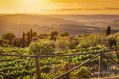 Vineyard Landscape In Tuscany, Italy. Wine Farm At Sunset Print by Michal Bednarek