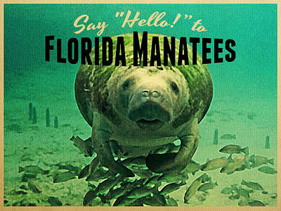 Manatee Digital Art - Vintage Florida Manatees by Flo Karp