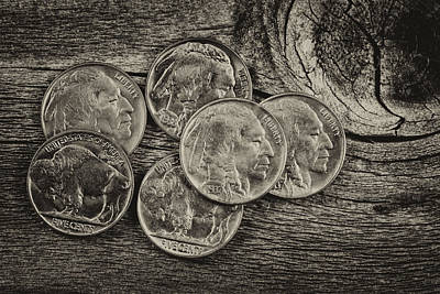Buffalo Head Nickel Photograph - Vintage Indian Head Nickels On Wood  by Thomas Baker