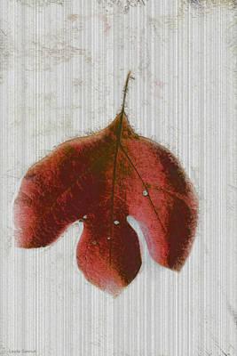 Vintage Leaf Original by Linda Sannuti