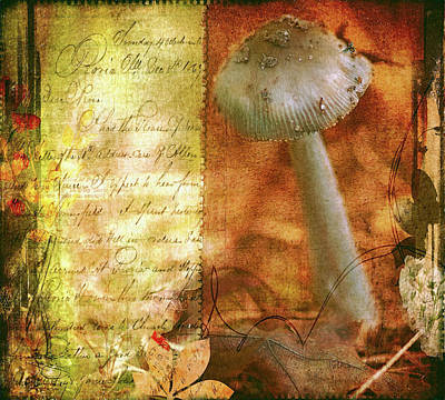 Mushroom Mixed Media - Vintage Nature Journal Page  by Bellesouth Studio