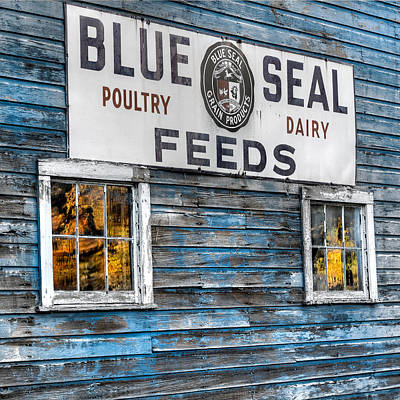 New England Dairy Farms Photograph - Vintage Feed Sign by Bill Wakeley
