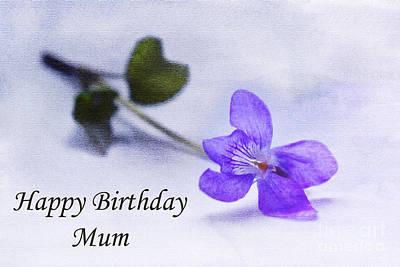 Violet Happy Birthday Mum Print by Terri Waters