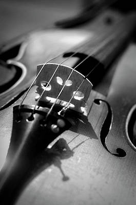 Ottawa Photograph - Violin by Danielle Donders - Mothership Photography