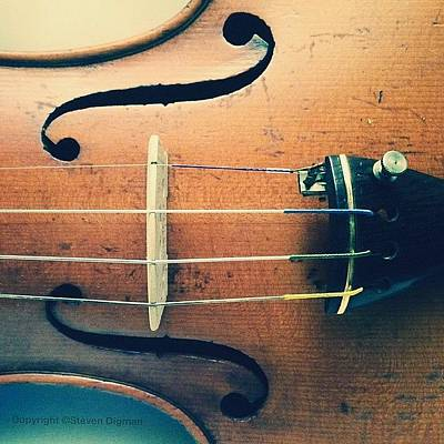 Music Photograph - The Violin by Steven  Digman
