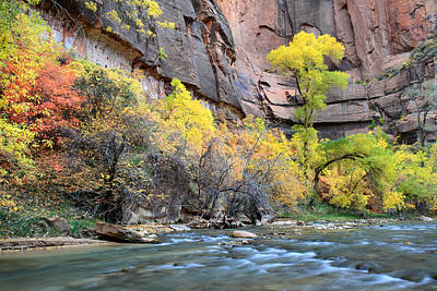 Zion National Park Photograph - Virgin River At Sinawava Temple by Pierre Leclerc Photography