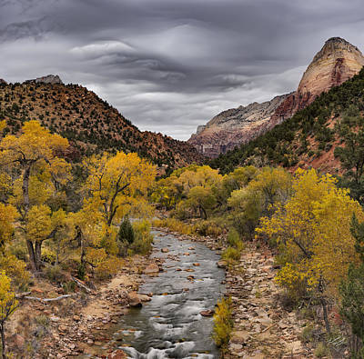 Southern Utah Photograph - Virgin River Fall by Leland D Howard