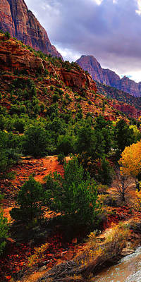 Zion National Park Photograph - Virgin River Triptych Left Panel by Greg Norrell