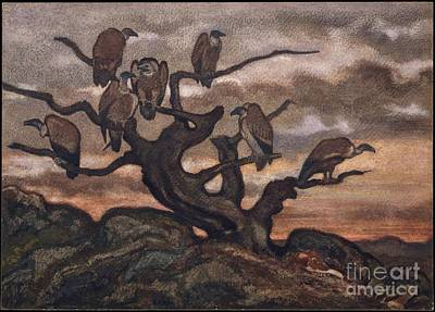 Vulture Painting - Vultures On A Tree by Antoine-Louis Barye