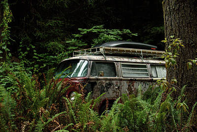 Vw Hides In The Woods Print by Richard Kimbrough