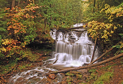 Wagner Falls Print by Michael Peychich