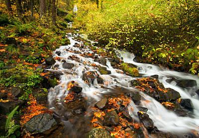 Oregon Photograph - Wahkeena Autumn by Mike  Dawson