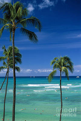 Three Trees Photograph - Waikiki Seascape by Carl Shaneff - Printscapes