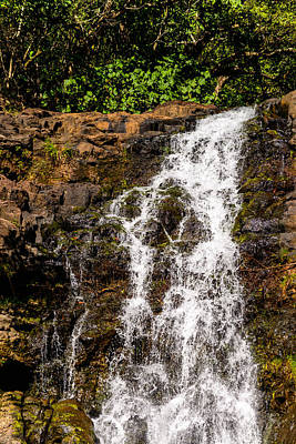 Waimea Falls Print by Michael Scott