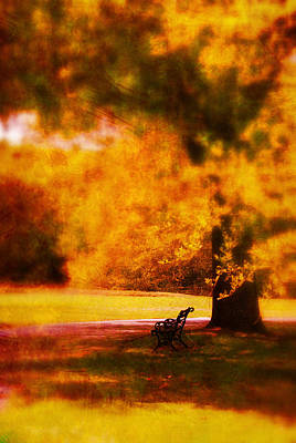 Park Benches Photograph - Waiting For Ever by Susanne Van Hulst
