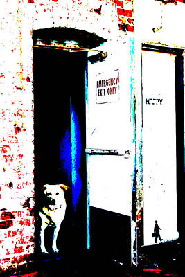 Dog At Door Photograph - Waiting For His Master by Michael Ledray