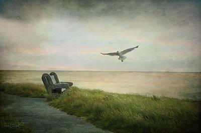 Photograph - Waiting On A Friend by Fran J Scott