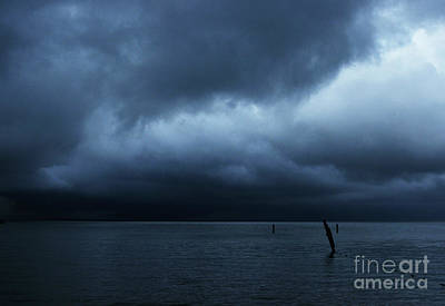 Waiting Out The Storm Print by Linda Shafer