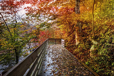 Smokey Mountain Drive Photograph - Walk Into Autumn by Debra and Dave Vanderlaan