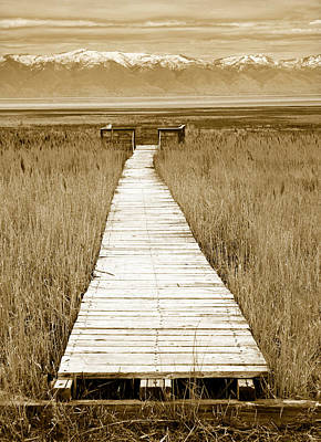 Utah Photograph - Walk With Me 1 by Marilyn Hunt