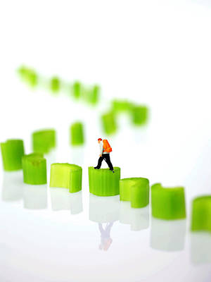 Micro Miniature Photograph - Walking On Celery  by Paul Ge