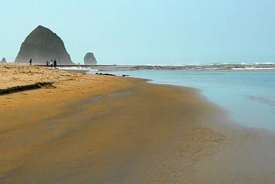 Nature Photograph - Walking The Beach by David Patterson