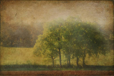 Painterly Photograph - Walking The Dog Vii by Robert Brown