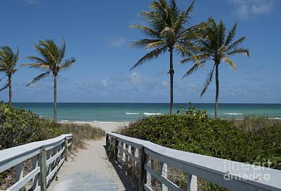 Walkway To The Beach Print by Juli Scalzi