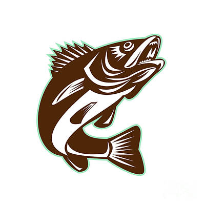 Pickerel Digital Art - Walleye Fish Jumping Isolated Retro by Aloysius Patrimonio