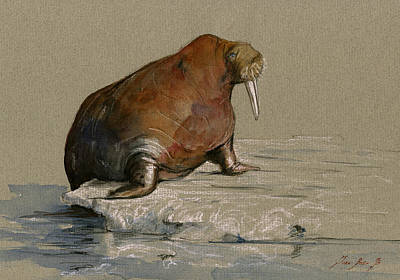Seals Painting - Walrus On Ice by Juan  Bosco