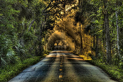 Walter Boardman Lane Print by Andrew Armstrong  -  Mad Lab Images
