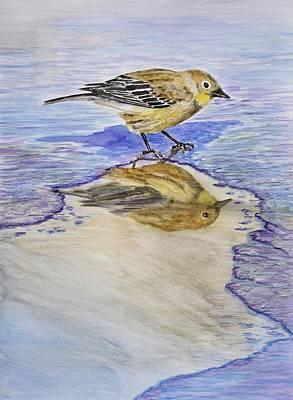 Warbler Reflection I Watercolor Original by Linda Brody
