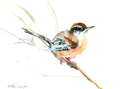 Sahara Drawing - Warbler Songbird Art  by Suren Nersisyan