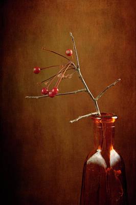 Photograph - Warm Colors by Randi Grace Nilsberg