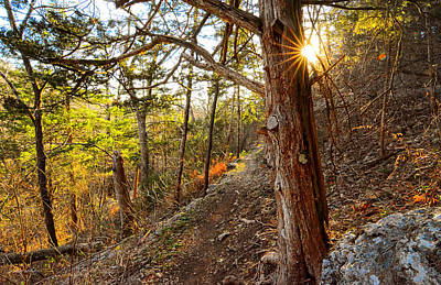 Sun Rays Painting - Warmth Of Comfort - Blowing Springs Trail In Bella Vista Arkansas by Lourry Legarde