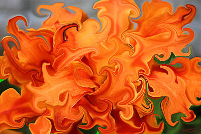 Abstract Realism Digital Art - Warped Tiger Lily by Kristin Elmquist