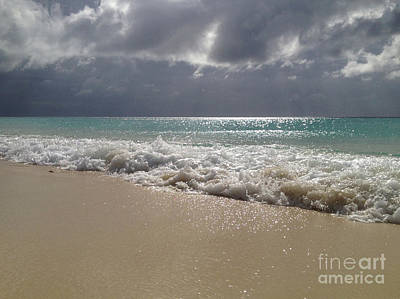 Phthalo Green Photograph - Washed Ashore  by Clay Cofer