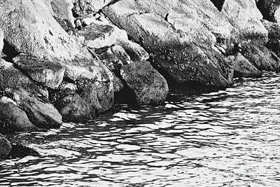 Reaching Up Digital Art - Rocky Shoreline by Carol F Austin
