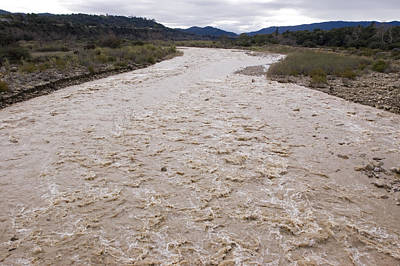 Water Flowing After Record-setting Print by Rich Reid