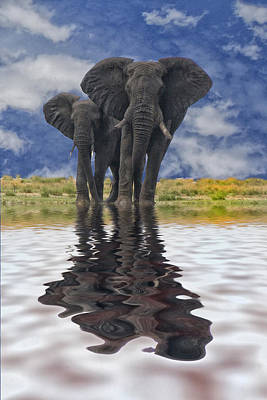 Water For Elephants Original by Beverly Hanson