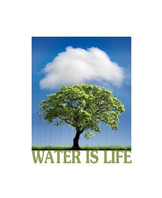 Water Is Life Print by Mal Bray