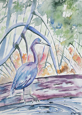 Watercolor - Little Blue Heron In Mangrove Forest Print by Cascade Colors