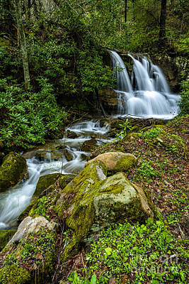 West Fork Photograph - Waterfall Along Back Fork Of Elk River by Thomas R Fletcher