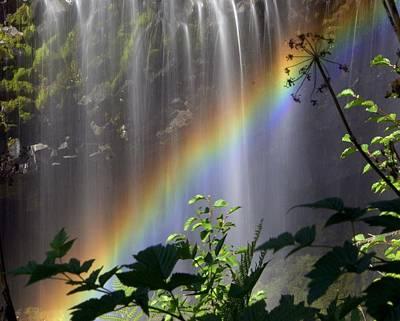 Waterfall Rainbow Print by Marty Koch