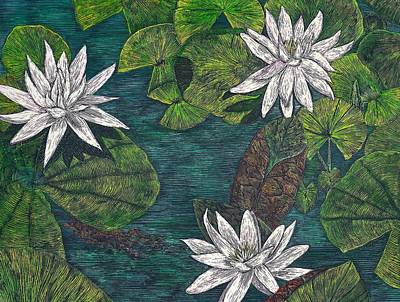 Scratchboard Painting - Waterlilies by Cynthia Conklin