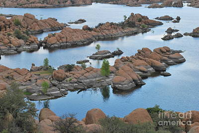 Watson Lake Arizona Fingerlings Number 2 Print by Heather Kirk