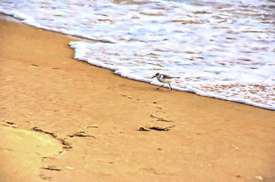 Sandpiper Digital Art - Wave Runner by Jan Amiss Photography