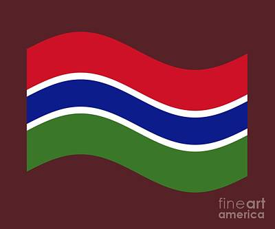 Gambia Mixed Media - Waving Gambia Flag by Frederick Holiday