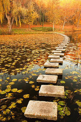 Bulgaria Photograph - Way In The Lake by Evgeni Dinev